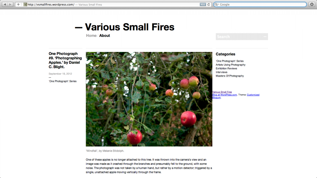 Screen shot of the website 'Various Small Fires'