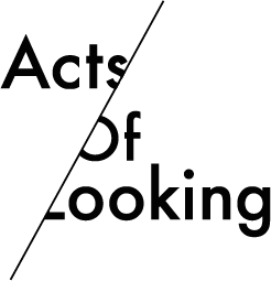 Acts of Looking logo